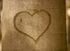 Сердце, вырезанное на коре