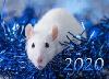 Новогодняя мышь в мишуре
